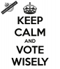 keep-calm-and-vote-wisely-16.png