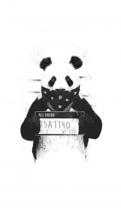 Bad panda759_rectangle.jpg