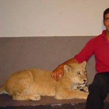 Mikel Fernandez