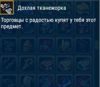 _20190626_024017.jpg