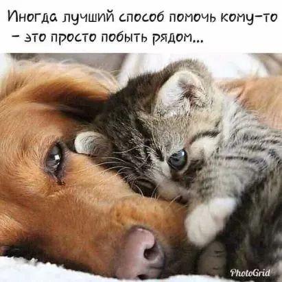 FB_IMG_1563811906979.jpg