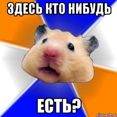 homyak_64676611_orig_.jpg