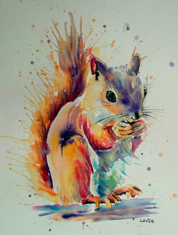 a834434be2eab15a654e433759903660--squirrel-watercolour-squirrel-painting.jpg