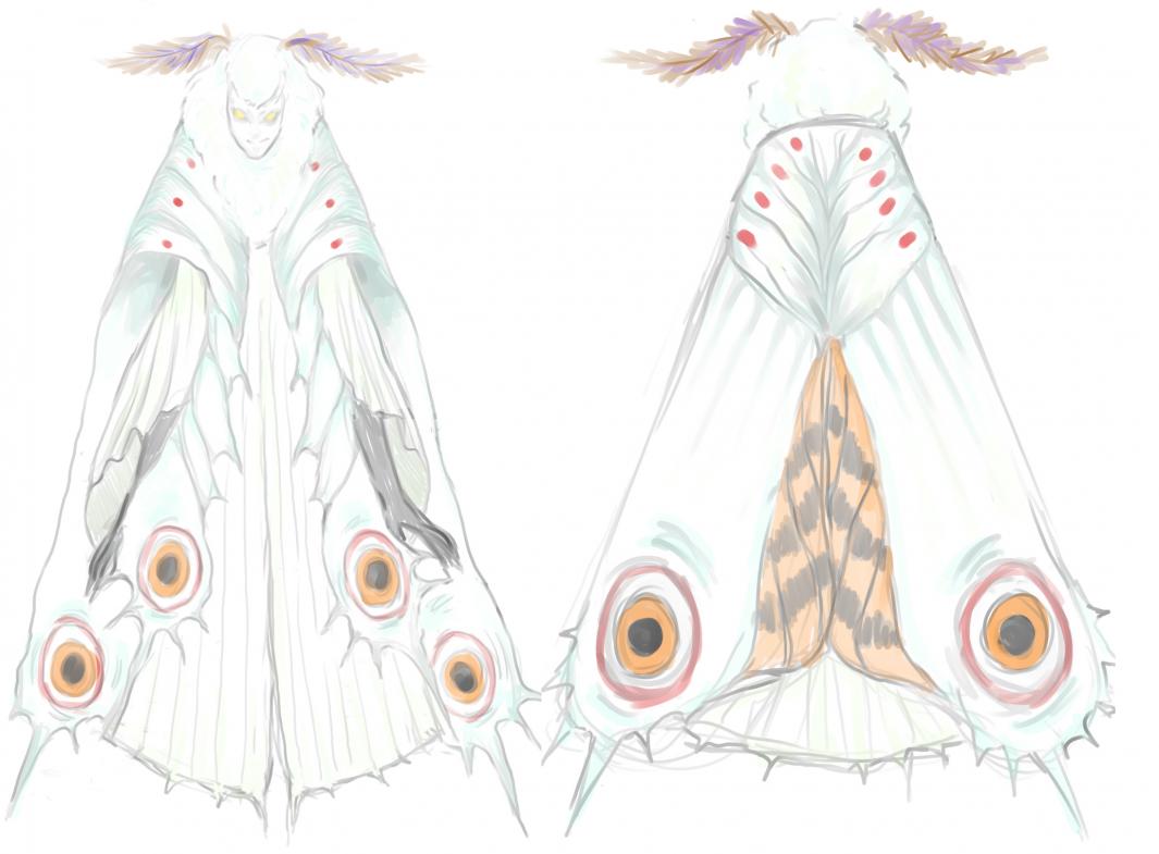 moth0.thumb.png.443243ce8de6651089927909293907e4.png